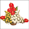 Friendship Blossoms - Click here to View more details about this Product