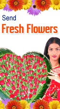 FRESH FLOWERS TO VIJAYAWADA